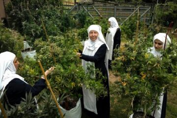 Sisters of the Valley, monjas mariguanas